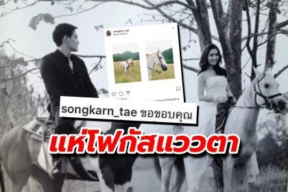 รูปข่าว สงกรานต์ โพสต์! คนแห่โฟกัสแววตาม้าสีขาว เอะใจ  แอฟ เคยนั่งตอนถ่ายพรีเวดดิ้ง??