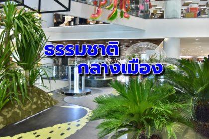 รูปข่าว 'Siam Discovery : Keep It Cool' เติมพลังผ่านธรรมชาติใจกลางเมือง