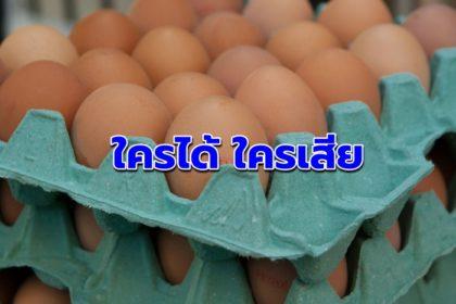 รูปข่าว จับตาบริษัทยักษ์ใหญ่ผลิตไข่ไก่บุกไทย 'ใครได้ ใครเสีย'