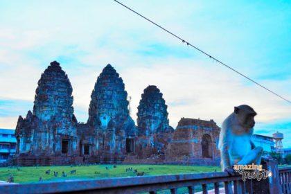 รูปข่าว 'ลิงจั๊กจั๊ก' เรารัก 'ลพบุรี'