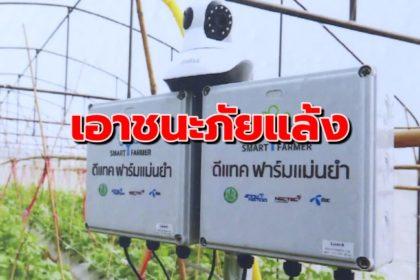 รูปข่าว 'ฟาร์มแม่นยำ' จากดีแทค ร่วมกับ รีคัลท์ คาดการณ์ปริมาณน้ำฝนให้เกษตรกรไทย 'เอาชนะภัยแล้ง'