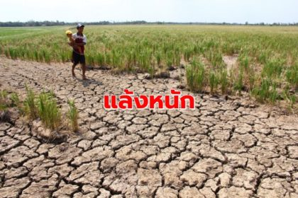 รูปข่าว เตือน 20 จังหวัดนอกเขตชลประทาน แล้งหนัก-ขาดน้ำทำเกษตร