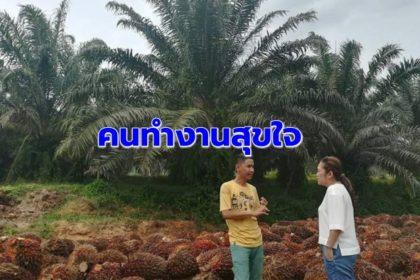 รูปข่าว ประกันรายได้ รอยยิ้มเกษตรกร ความสุขใจของคนทำงานเพื่อประชาชน