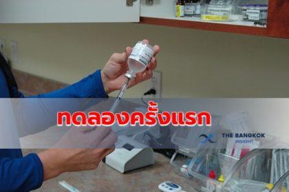 รูปข่าว ญี่ปุ่นเตรียมเริ่มทดลอง 'วัคซีนอีโบลาตัวใหม่' ในคนเป็นครั้งแรก