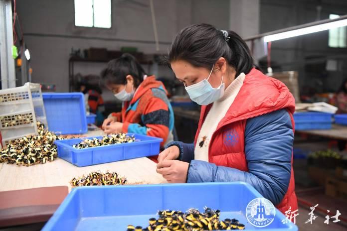 การผลิตจีน