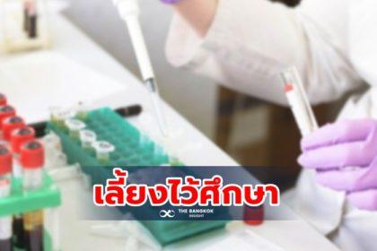 รูปข่าว นักวิจัยจีน 'เพาะแยก' ไวรัสโควิด-19 ในห้องแล็บ เอื้อคิดวัคซีนป้องกัน