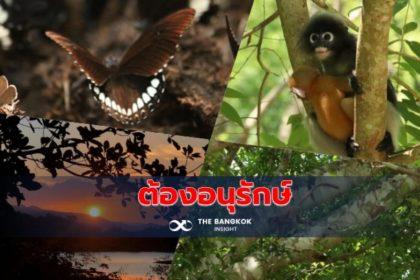รูปข่าว 'กลุ่มป่าแก่งกระจาน' ความสมบูรณ์ที่ควรค่าแก่การอนุรักษ์