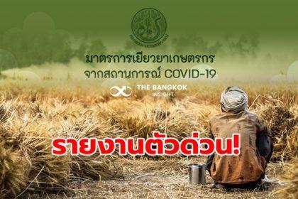 รูปข่าว เยียวยาเกษตรกร.com โอนเงินไม่ได้!! เกษตรกร 3.5 แสนคนรีบรายงานตัวด่วน