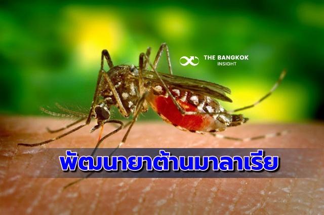 พัฒนายาต้านมาลาเรีย