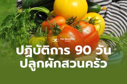 รูปข่าว พช. ลุยเฟส 2 'ปลูกผักสวนครัว' ยุติความหิวโหย สร้างความมั่นคงทางอาหาร