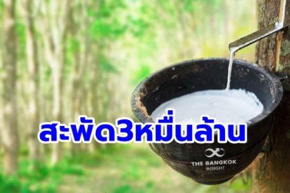 รูปข่าว 'อนุทิน' เตรียมนำทีมคิกออฟ 'โครงการใช้ยางพาราเพิ่ม' โว! เกษตรกรได้ 3 หมื่นล้าน