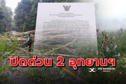 รูปข่าว ด่วน! ประกาศปิด 'อุทยานแห่งชาติเขาใหญ่-ภูสอยดาว' หลังพายุ 'โนอึล' ถล่ม