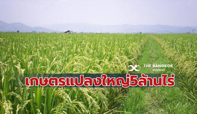 ยกระดับเกษตรแปลงใหญ่