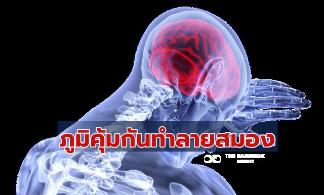 โรคภูมิคุ้มกันตัวเองทำลายสมอง