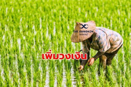 รูปข่าว ชาวนาเฮ! รัฐใจป้ำเพิ่มวงเงินประกันรายได้ปลูกข้าวกว่า 4.6 หมื่นล้าน