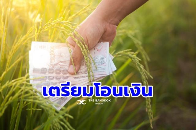 Rice price insurance