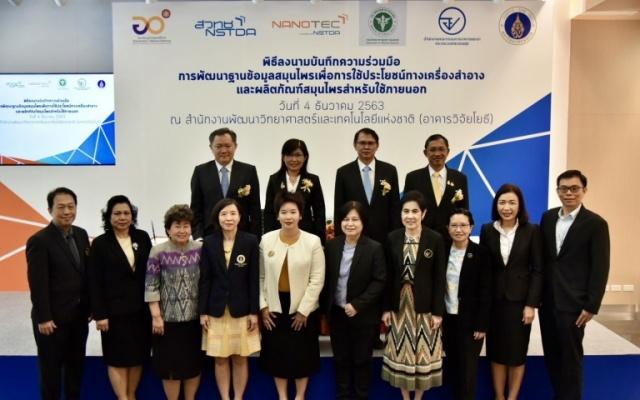 พัฒนาฐานข้อมูล สมุนไพรไทย
