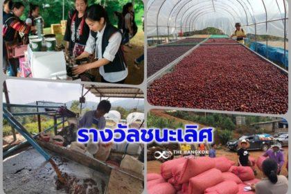 รูปข่าว สานพลังฯ รับรางวัลชนะเลิศ Sustainable Business Awards Thailand 2019