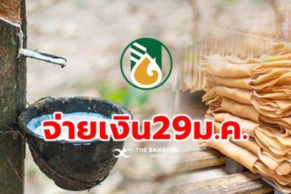 รูปข่าว รอเลย! 'ประกันราคายางพารา งวด 3' จ่าย 29 ม.ค. เกษตรกรรับชดเชย 1.5 ล้านราย