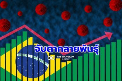 รูปข่าว จับตา 'โควิดกลายพันธุ์' บราซิล ส่อหลบภูมิคุ้มกัน-พบติดเชื้อซ้ำอื้อ