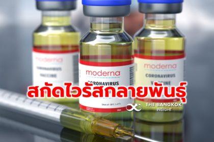 รูปข่าว ข่าวดี! โมเดอร์นา ประกาศ 'วัคซีนโควิด' รับมือไวรัสกลายพันธุ์ได้