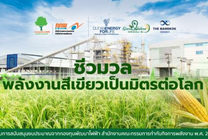 รูปข่าว (คลิป) ชีวมวล (Biomass) พลังงานสีเขียวเป็นมิตรต่อโลก