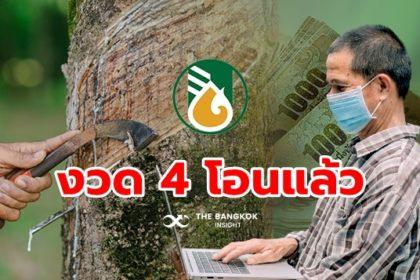 รูปข่าว 'ประกันราคายางพารา ระยะที่ 2' งวด 4 เริ่มจ่ายเงินแล้ว เกษตรกรรีบเช็ค!