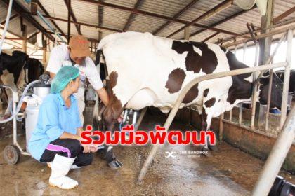 รูปข่าว 'คณะสัตวแพทยศาสตร์ จุฬาฯ' ทำเอ็มโอยู 'ซีพี-เมจิ' พัฒนาผลผลิตโคนม