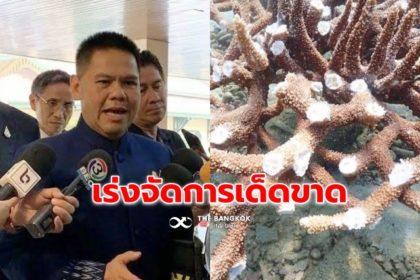 รูปข่าว 'วราวุธ' จี้สืบคดี ทำลาย 'ปะการังเกาะทะลุ' ลั่นใช้กม.จัดการหนัก