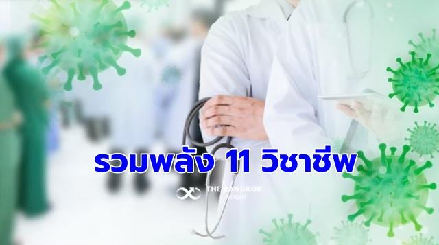 11 สภาวิชาชีพ