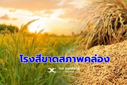 รูปข่าว 'เพื่อไทย' โวยรัฐเมินโรงสีขาดสภาพคล่อง กระทบชาวนาขายข้าวไม่ได้